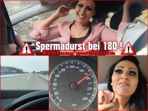 Mira-Grey Schwanzblasen bei 180km/h im Auto auf der Autobahn